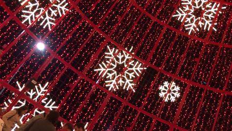 Christmas in Funchal