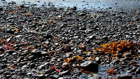 Pebbles by Mark Blezard