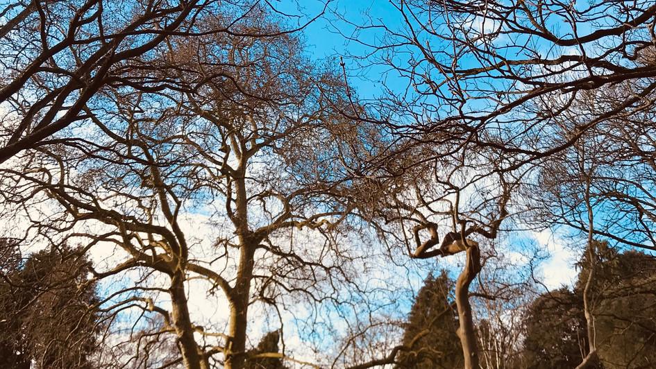 Henrietta Park, Bath, England