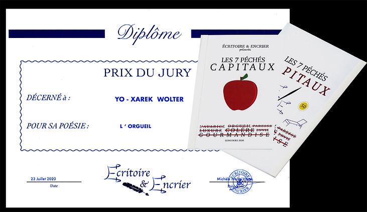 2020-07-23 Prix du Jury couverture.jpg