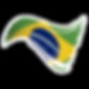 Brazilian Flag Brazil