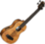 kala, u-bass, bass, rubber, strings, acoustic, ukelele, travel, luggage