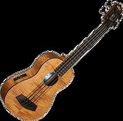 kala, u-bass, bass, rubber, strings, acoustic, ukelele, travel, luggage