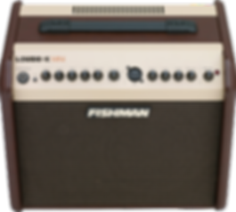 fishman, loudbox, mini, amplifier, amp, acoustic, guitar, 60w, portable, travel