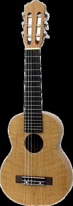 ashbury, au-40g, guitarrita, guitarlele, small, six, string, nylon, travel