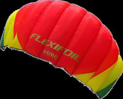 flexifoil, sting, 2, II, review, kite, kids, children, children's, kids', beginner, power, powerkite, traction, tractionkite, foil, fly, stunt, stunts, pull, park, four, line, lines, ripstop, nylon, ram, air, sky