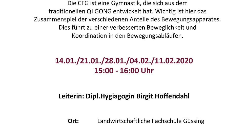 Güssing - Chinesische Funktionsgymnastik (Workshopreihe) - 1