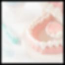 kamoku_btn01.png