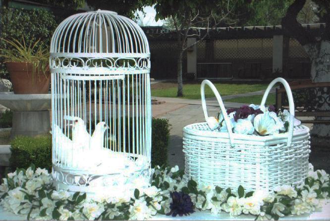 birddisplay