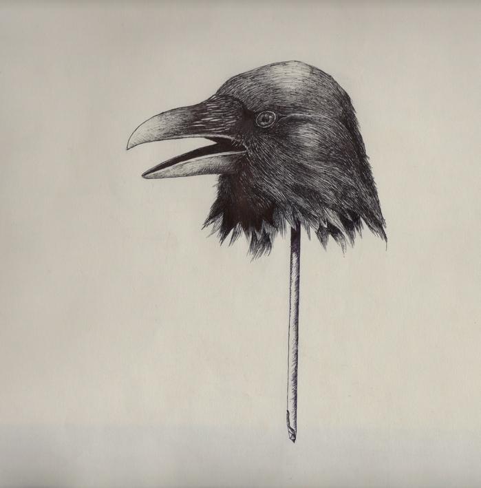 crow 1038.jpg