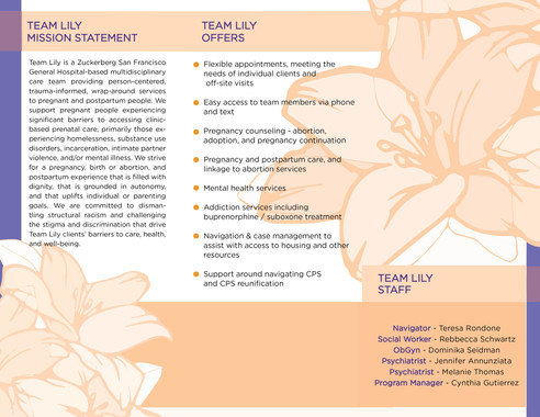 Team Lily pg. 2