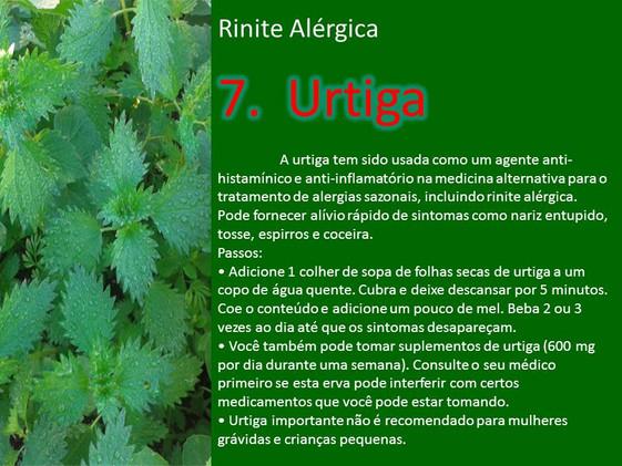 alergia medicina10.jpg