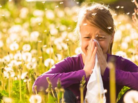 Principais questões sobre alergias em Portugal