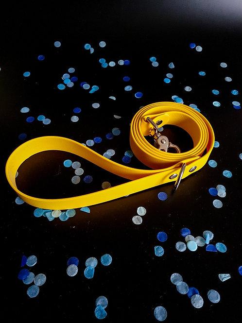 Laisse jaune - argent