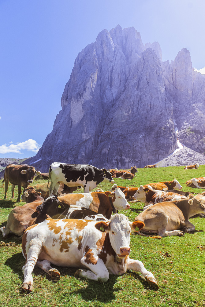 Dolomites Mountains, North of Italy