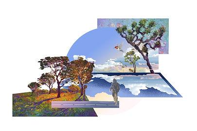 cyprus landscape design architecture trnc kktc