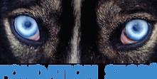 logo_Fondation-Segre1.png