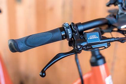 Elby E-Bike Verleih Frankfurt