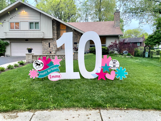 10 with teal, hot pink, and pink accents with horse and acting specialty accents