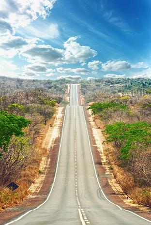 Road to positive cash flow.PNG