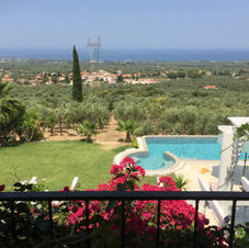 Views over olive groves