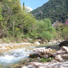 Amazing river walks