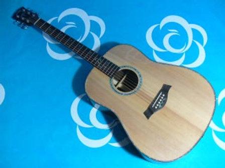 Acoustic #010