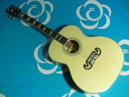 Acoustic #011