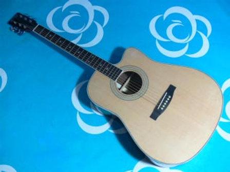 Acoustic #009