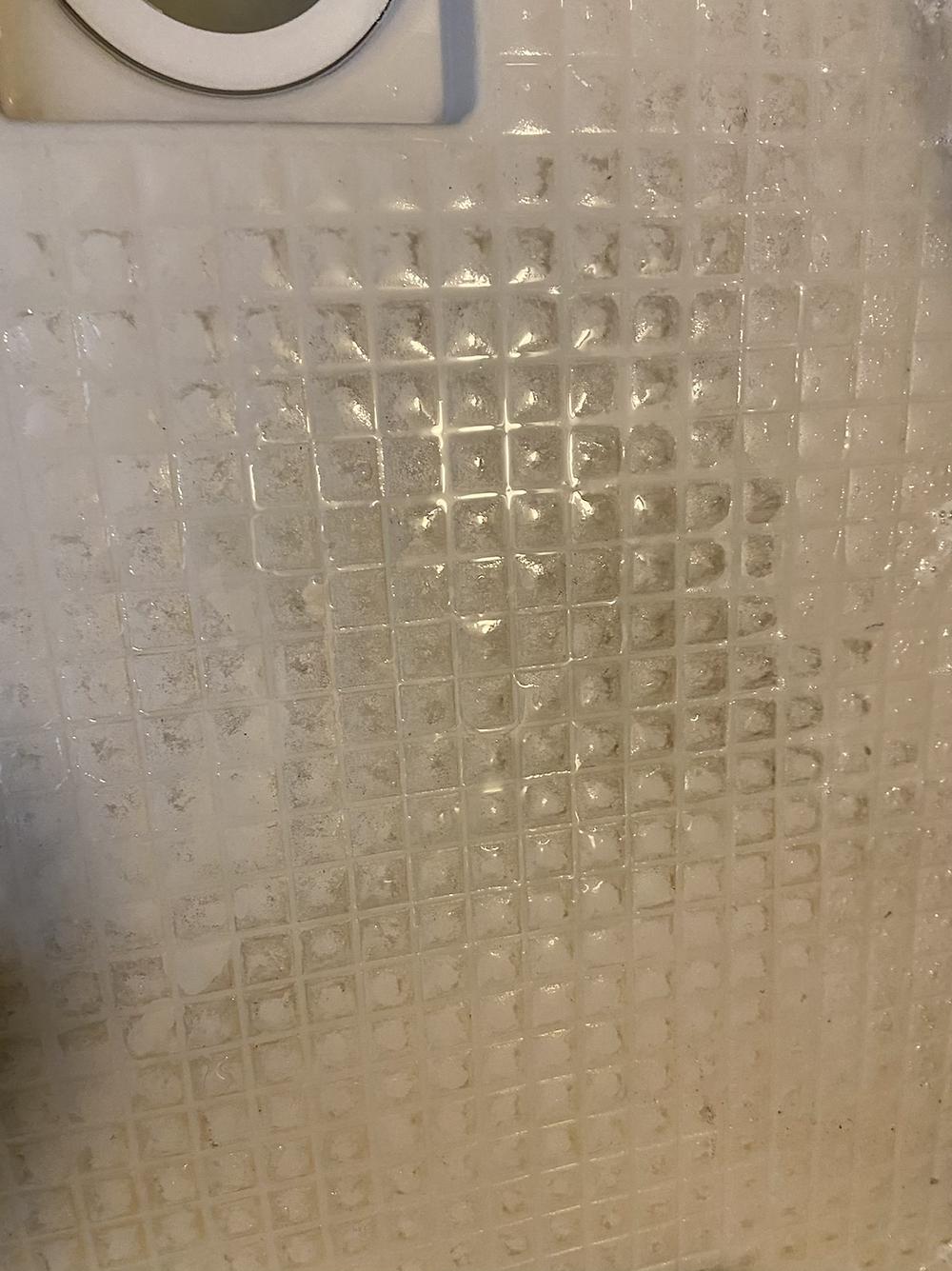 名古屋 浴室クリーニング ハウスクリーニング ビビ