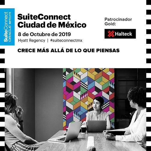 halteck-netsuite-suiteconnect-ciudad-de-