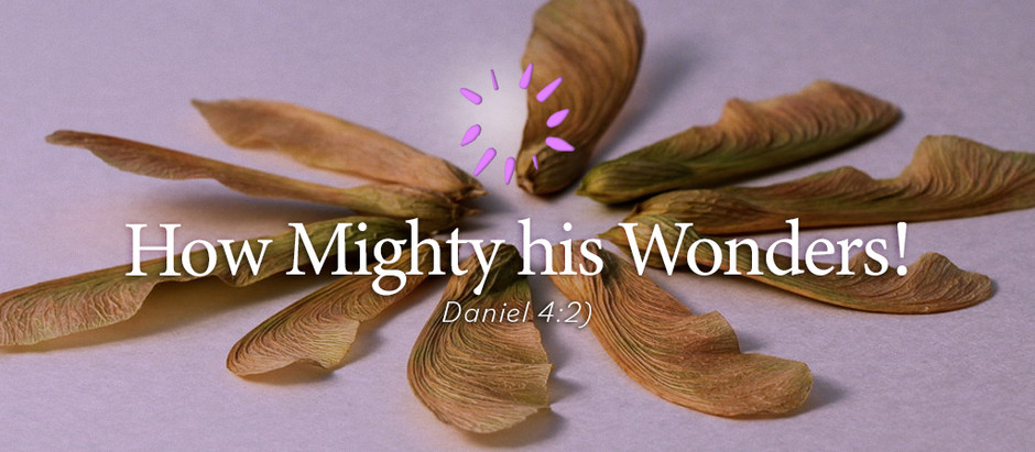 How Mighty his Wonders!