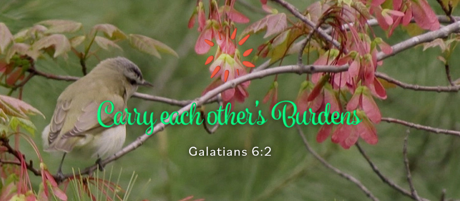 Carry each other's Burdens