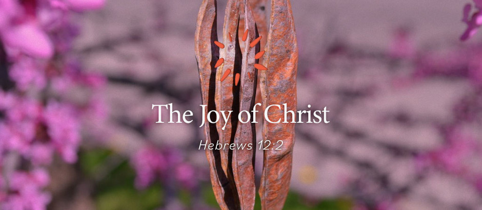 The Joy of Christ