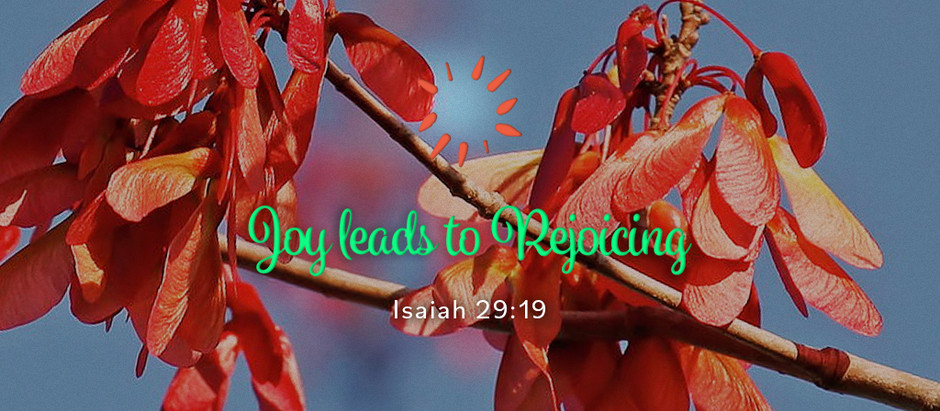 Joy leads to Rejoicing