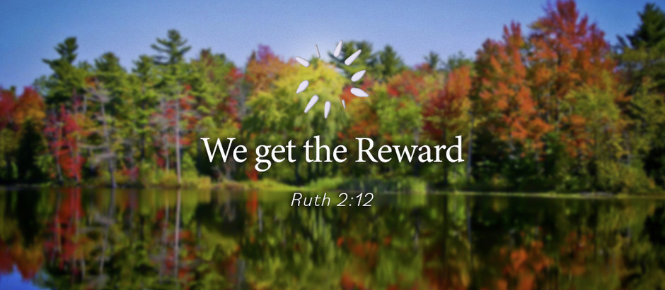 We get the Reward