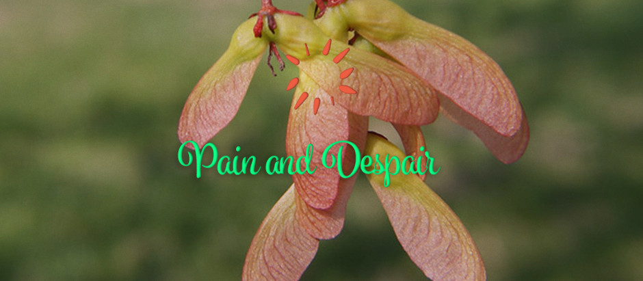 Pain and Despair