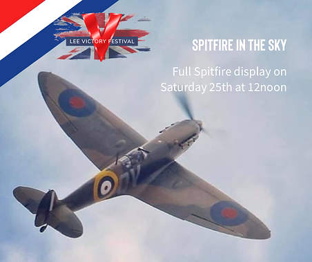 Spitfire in the Air.png