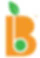 Big Bazaar logo.png