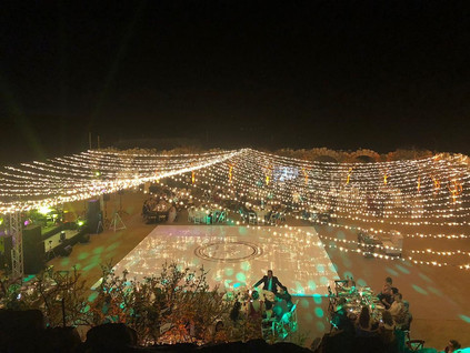 avantec string lights