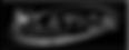 elation-professional-vector-logo_edited_