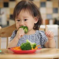 Como introduzir alimentos aos bebês? As dicas para iniciar a dieta dos pequenos