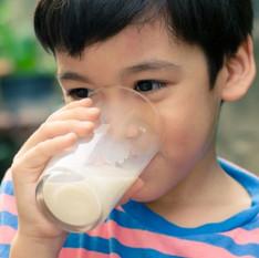 Tipos de leite: Integral, semi-integral, zero lactose... Qual é o mais indicado?