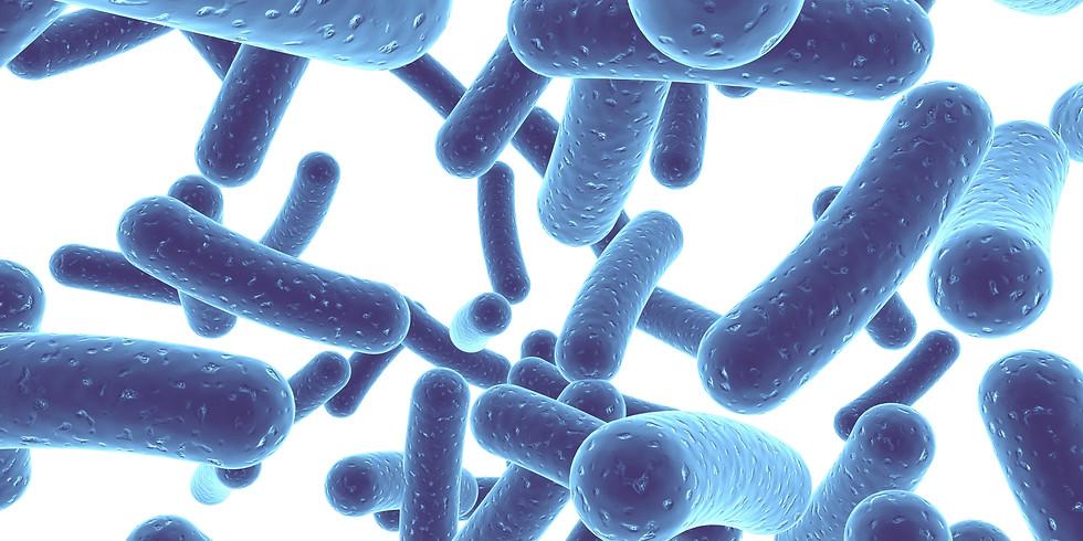 Utilização de Probióticos na Prática Clínica