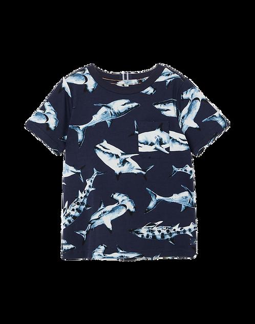 Tom Joules T-Shirt