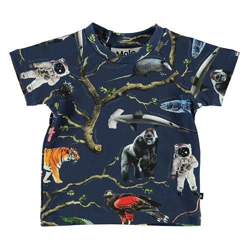 Molo Baby T-Shirt