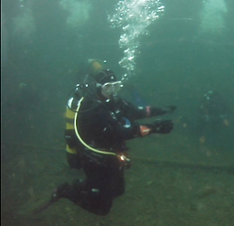 Diver snapshot (2)_edited.png