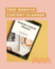 Copy of Website Checklist Freebie Ad 2.p