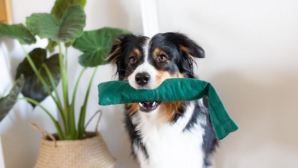 Stabiles Hundespielzeug aus Bio Baumwolle