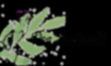 HundeOnlineShop_DogSoulmate_Logo_Hundele